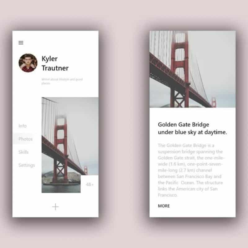 Minimal Profile - Minimal UI Design Speed Art